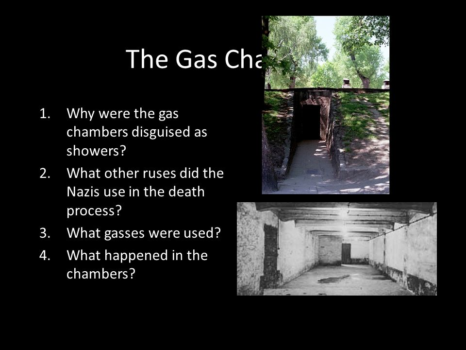 The Gas Chambers 1.Why were the gas chambers disguised as showers? 2.What other ruses did the Nazis use in the death process? 3.What gasses were used?