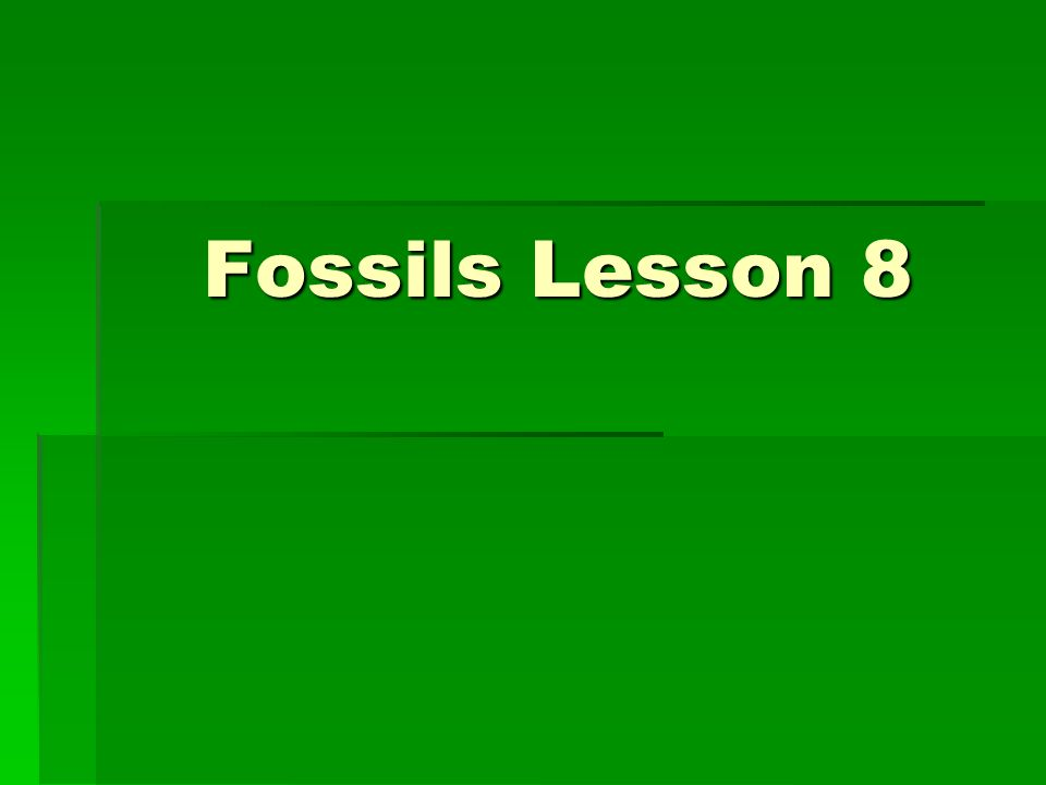 Fossils Lesson 8