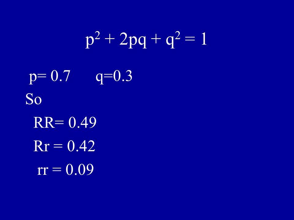 p 2 + 2pq + q 2 = 1 p= 0.7 q=0.3 So RR= 0.49 Rr = 0.42 rr = 0.09