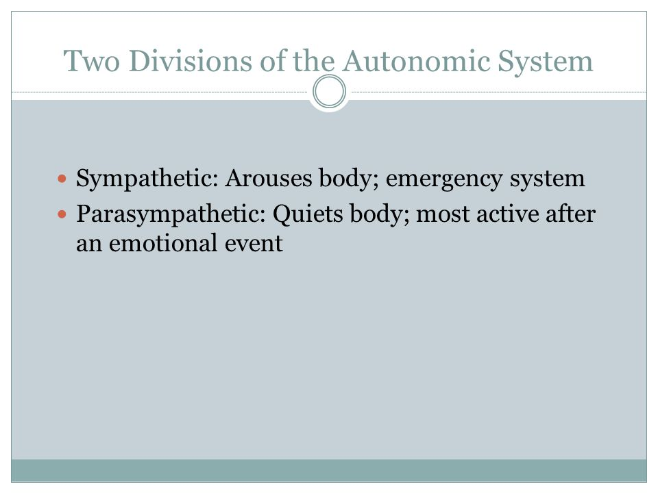 Two Divisions of the Autonomic System Sympathetic: Arouses body; emergency system Parasympathetic: Quiets body; most active after an emotional event