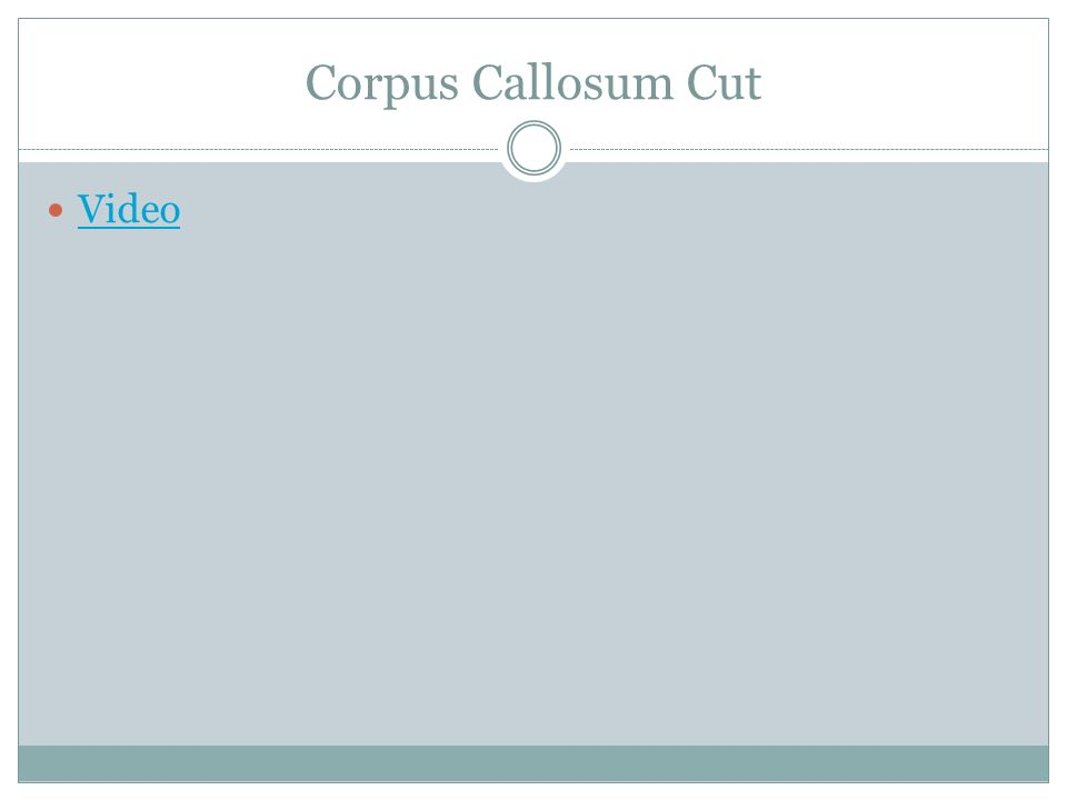 Corpus Callosum Cut Video