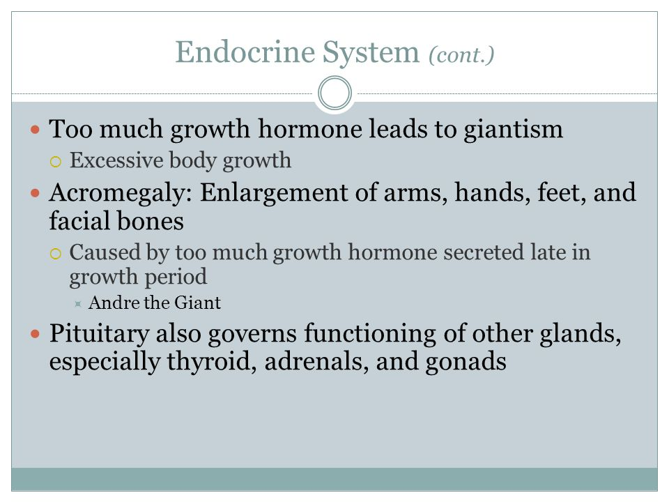 Endocrine System (cont.) Too much growth hormone leads to giantism Excessive body growth Acromegaly: Enlargement of arms, hands, feet, and facial bone