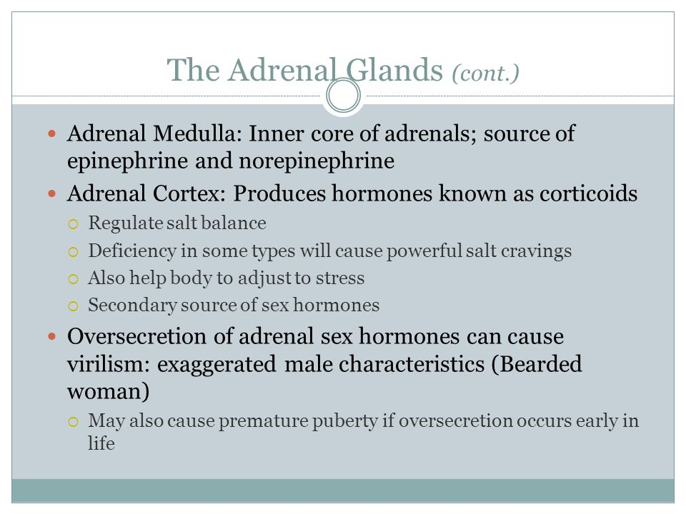 The Adrenal Glands (cont.) Adrenal Medulla: Inner core of adrenals; source of epinephrine and norepinephrine Adrenal Cortex: Produces hormones known a