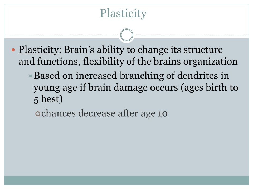 Plasticity Plasticity: Brains ability to change its structure and functions, flexibility of the brains organization Based on increased branching of de