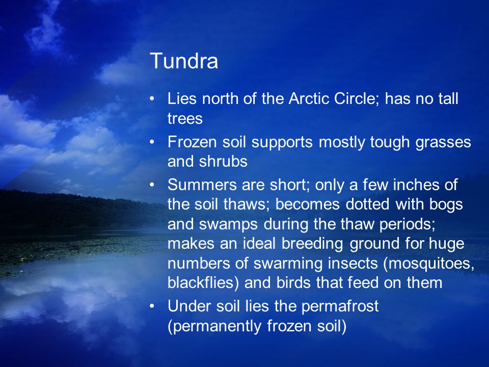 Tundra Lies north of the Arctic Circle; has no tall trees Frozen soil supports mostly tough grasses and shrubs Summers are short; only a few inches of