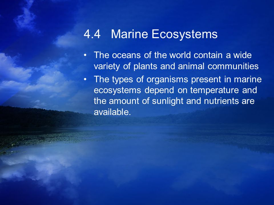 4.4 Marine Ecosystems The oceans of the world contain a wide variety of plants and animal communities The types of organisms present in marine ecosyst