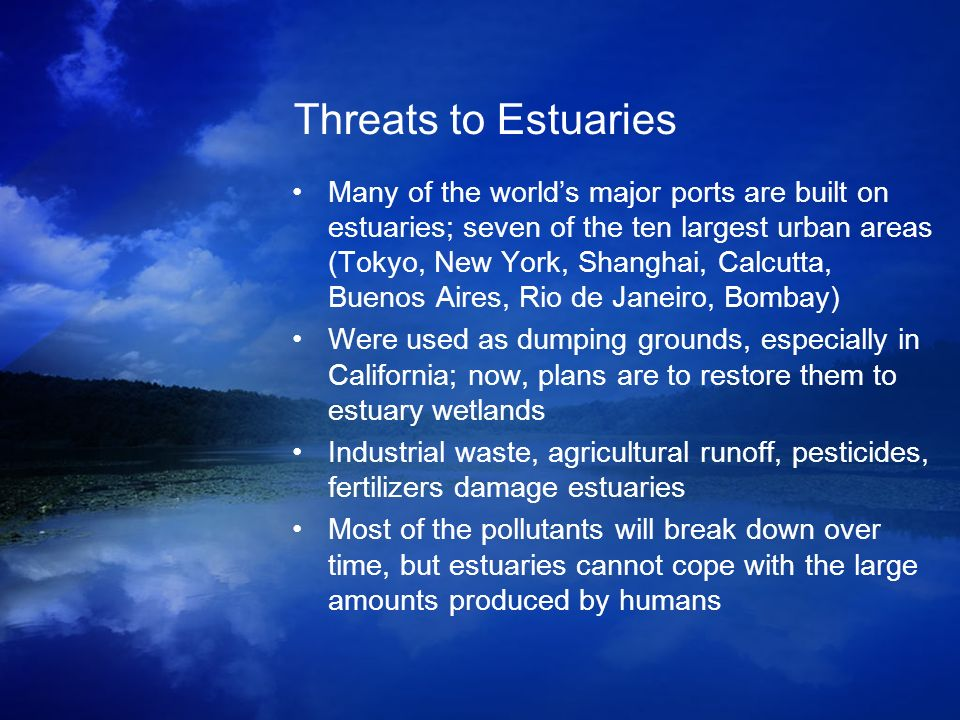 Threats to Estuaries Many of the worlds major ports are built on estuaries; seven of the ten largest urban areas (Tokyo, New York, Shanghai, Calcutta,