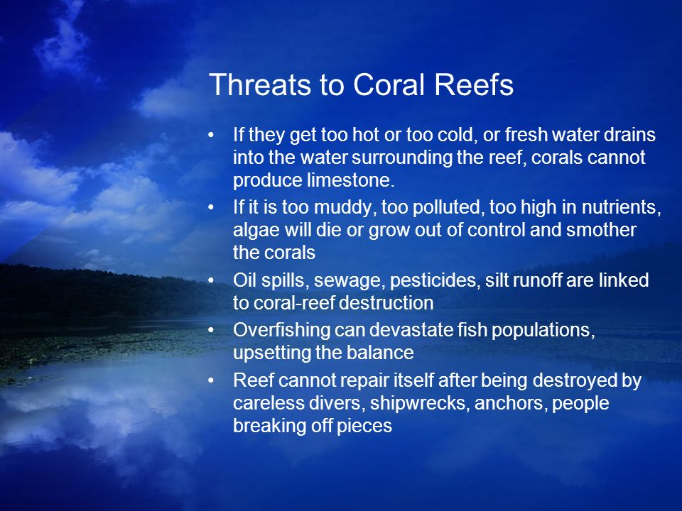 Threats to Coral Reefs If they get too hot or too cold, or fresh water drains into the water surrounding the reef, corals cannot produce limestone. If