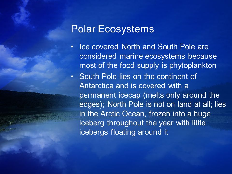 Polar Ecosystems Ice covered North and South Pole are considered marine ecosystems because most of the food supply is phytoplankton South Pole lies on