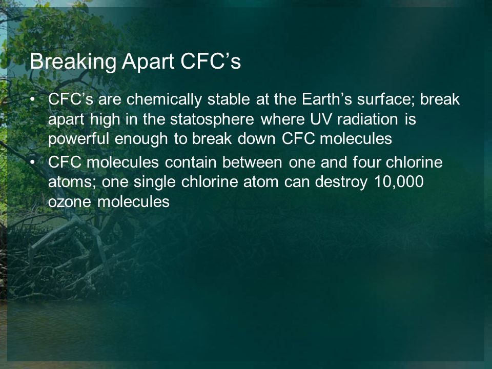 Breaking Apart CFCs CFCs are chemically stable at the Earths surface; break apart high in the statosphere where UV radiation is powerful enough to bre