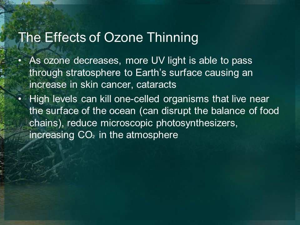 The Effects of Ozone Thinning As ozone decreases, more UV light is able to pass through stratosphere to Earths surface causing an increase in skin can