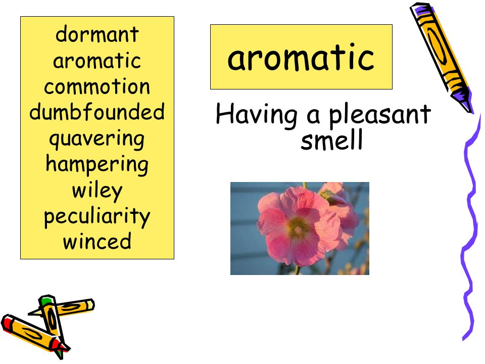 Words to Know dormant aromatic commotion dumbfounded quavering hampering wiley winced peculiarity