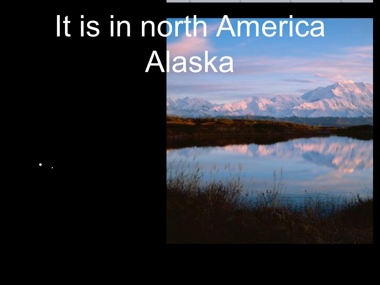 It is in north America Alaska.