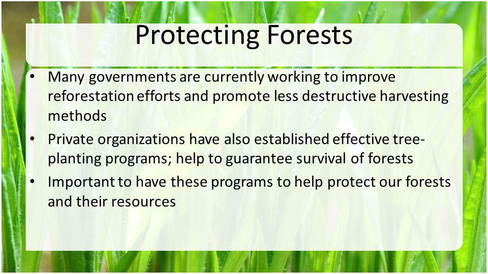 Protecting Forests Many governments are currently working to improve reforestation efforts and promote less destructive harvesting methods Private org