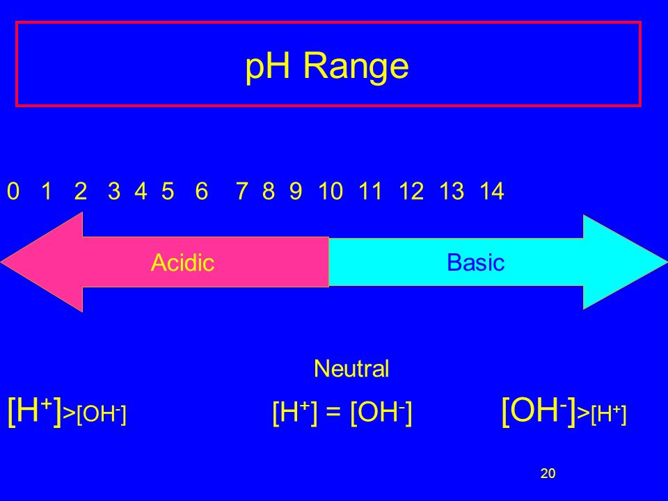 20 pH Range 0 1 2 3 4 5 6 7 8 9 10 11 12 13 14 Neutral [H + ] > [OH - ] [H + ] = [OH - ] [OH - ] > [H + ] Acidic Basic