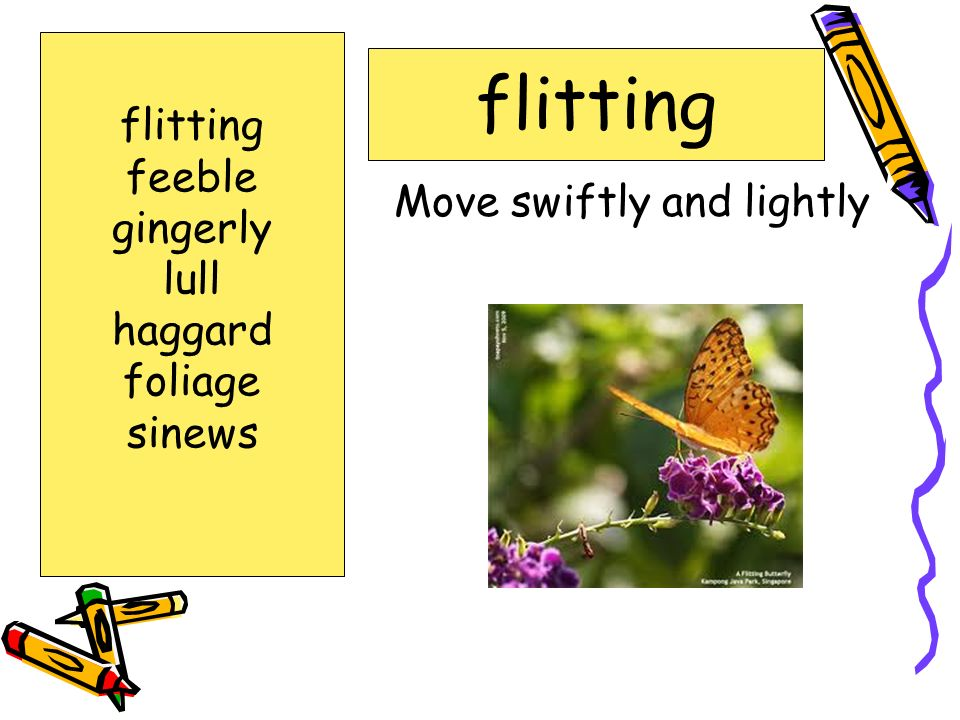 howing great care or caution: gingerly flitting feeble gingerly lull haggard foliage sinews