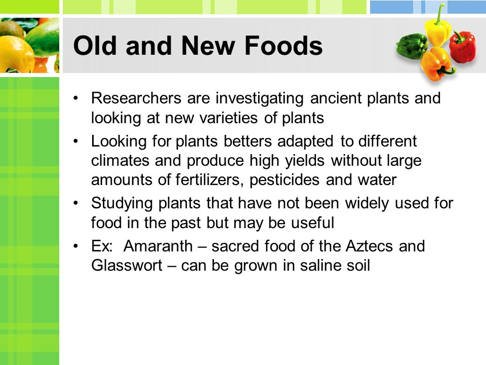 Old and New Foods Researchers are investigating ancient plants and looking at new varieties of plants Looking for plants betters adapted to different