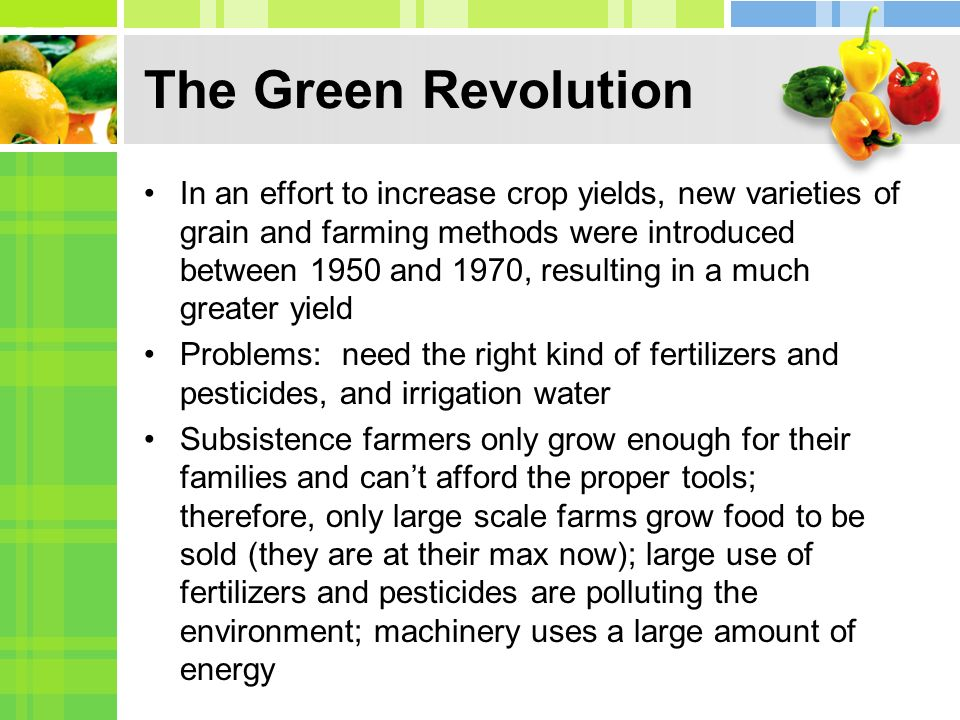 The Green Revolution In an effort to increase crop yields, new varieties of grain and farming methods were introduced between 1950 and 1970, resulting