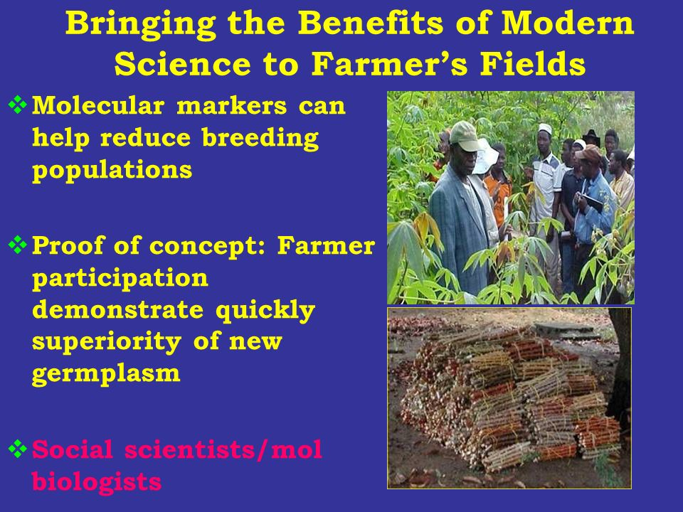 Bringing the Benefits of Modern Science to Farmers Fields Molecular markers can help reduce breeding populations Proof of concept: Farmer participatio