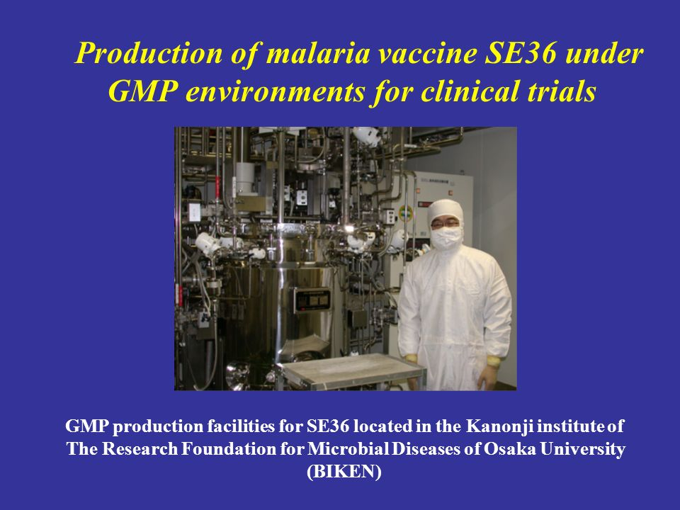 GMP production facilities for SE36 located in the Kanonji institute of The Research Foundation for Microbial Diseases of Osaka University (BIKEN) Production of malaria vaccine SE36 under GMP environments for clinical trials