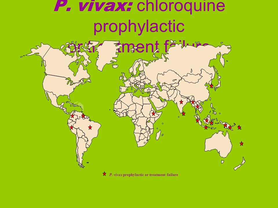 P. vivax: chloroquine prophylactic or treatment failure P. vivax prophylactic or treatment failure