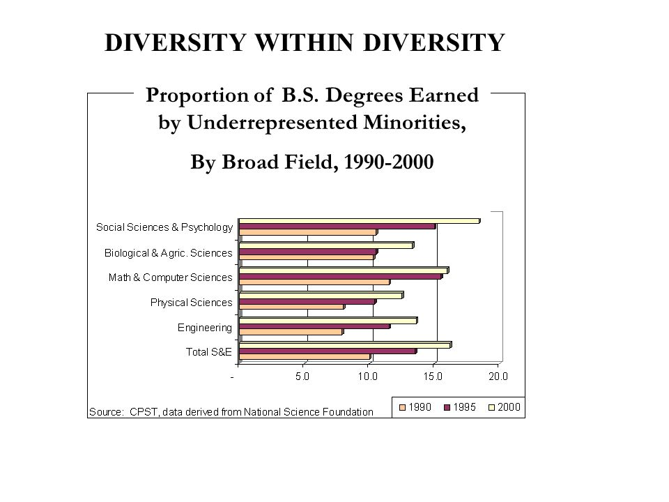 DIVERSITY WITHIN DIVERSITY Proportion of B.S.