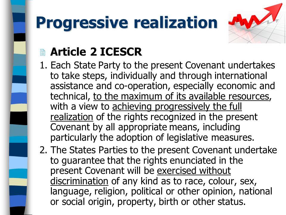 Progressive Realization General Comment No.