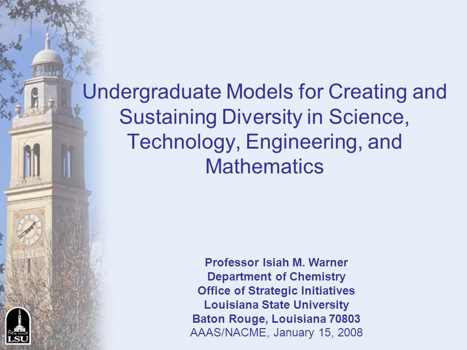 Undergraduate Models for Creating and Sustaining Diversity in Science, Technology, Engineering, and Mathematics Professor Isiah M. Warner Department o