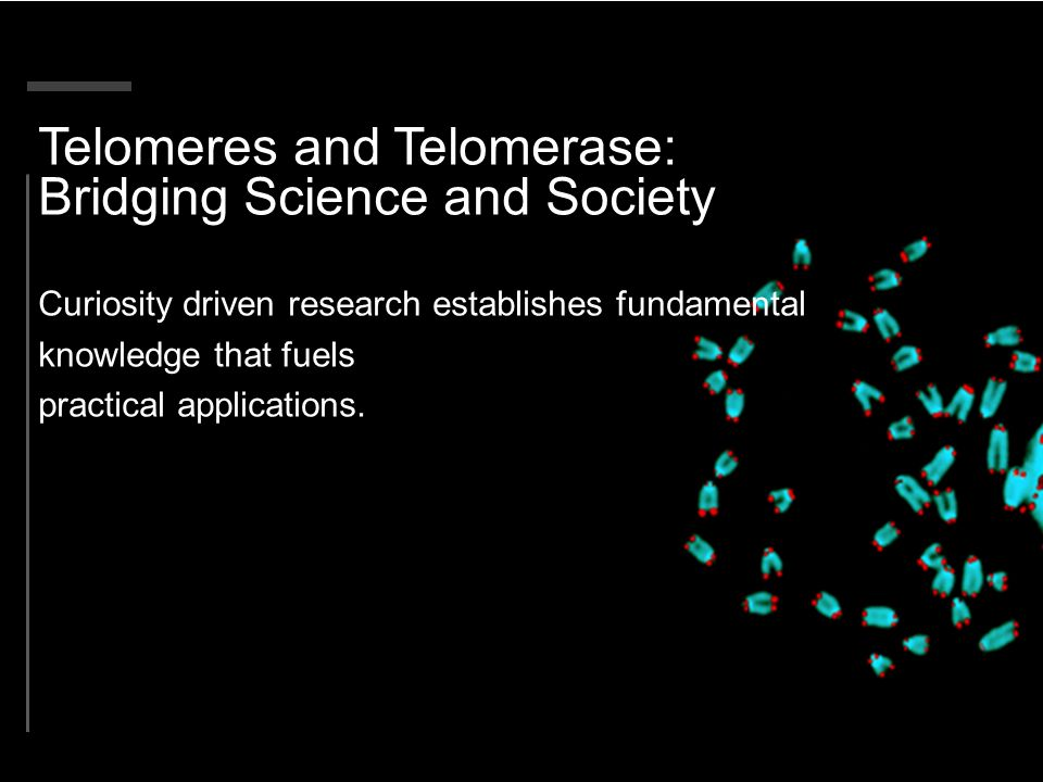 Telomere shortening implicated in several diseases Hopkins Family 1