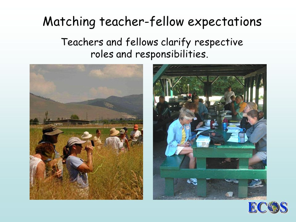 Teachers and fellows clarify respective roles and responsibilities.