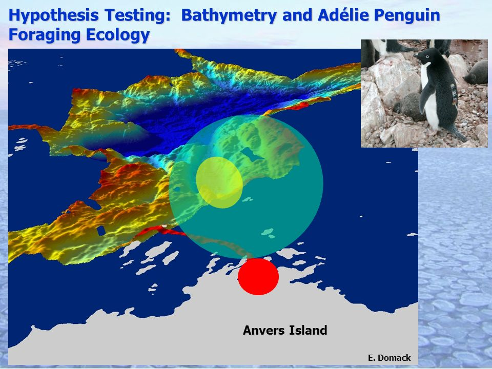 Hypothesis Testing: Bathymetry and Adélie Penguin Foraging Ecology Anvers Island E. Domack