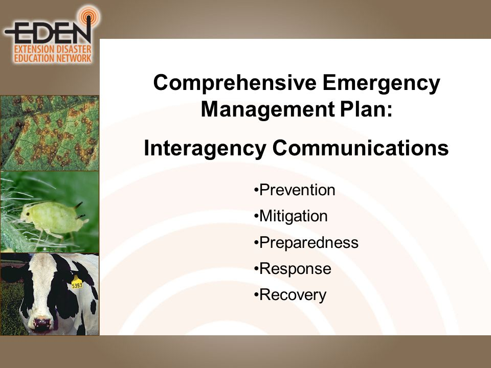 Prevention Mitigation Preparedness Response Recovery Comprehensive Emergency Management Plan: Interagency Communications