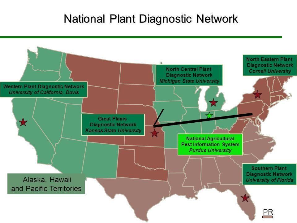 Western Plant Diagnostic Network University of California, Davis Great Plains Diagnostic Network Kansas State University Southern Plant Diagnostic Network University of Florida North Central Plant Diagnostic Network Michigan State University North Eastern Plant Diagnostic Network Cornell University National Agricultural Pest Information System Purdue University National Plant Diagnostic Network Alaska, Hawaii and Pacific Territories PR