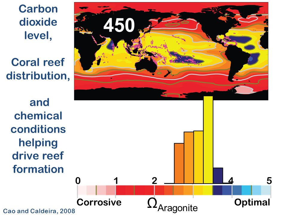 012345 CorrosiveOptimal Ω Aragonite Cao and Caldeira, 2008 Carbon dioxide level, Coral reef distribution, and chemical conditions helping drive reef formation