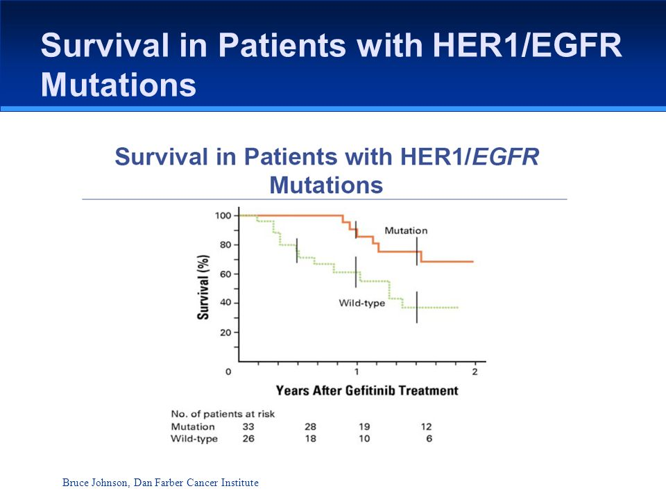 Survival in Patients with HER1/EGFR Mutations Bruce Johnson, Dan Farber Cancer Institute