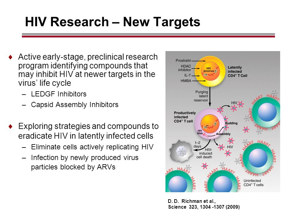HIV Research – New Targets Active early-stage, preclinical research program identifying compounds that may inhibit HIV at newer targets in the virus life cycle –LEDGF Inhibitors –Capsid Assembly Inhibitors Exploring strategies and compounds to eradicate HIV in latently infected cells –Eliminate cells actively replicating HIV –Infection by newly produced virus particles blocked by ARVs D.