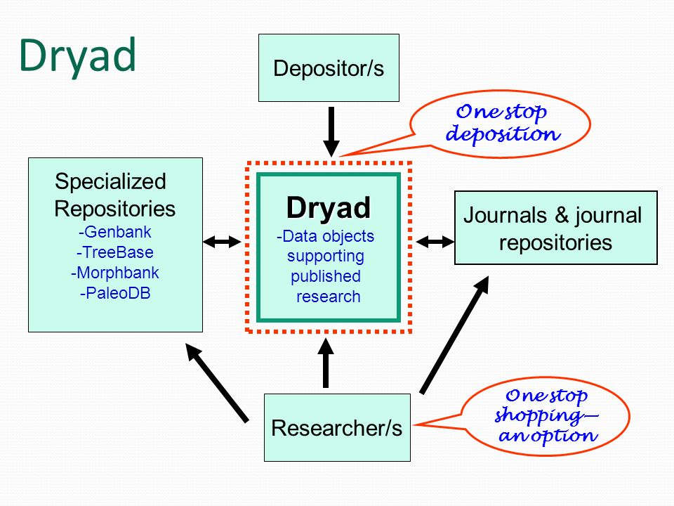 Dryad Depositor/s Specialized Repositories -Genbank -TreeBase -Morphbank -PaleoDB Journals & journal repositories Dryad -Data objects supporting publi