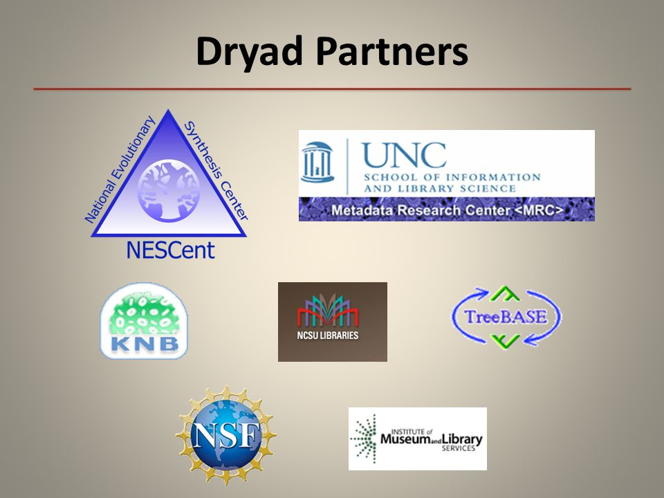 Dryad Partners