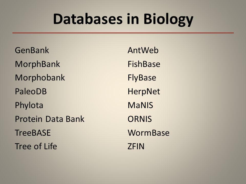 Databases in Biology GenBank MorphBank Morphobank PaleoDB Phylota Protein Data Bank TreeBASE Tree of Life AntWeb FishBase FlyBase HerpNet MaNIS ORNIS WormBase ZFIN