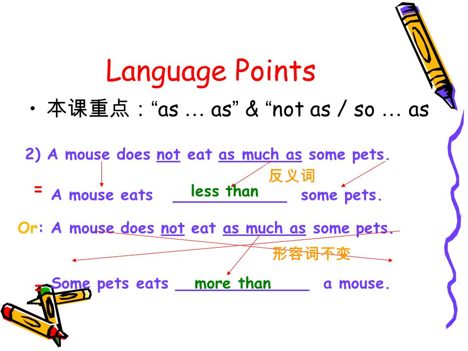 Language Points as … as & not as / so … as 2) A mouse does not eat as much as some pets.