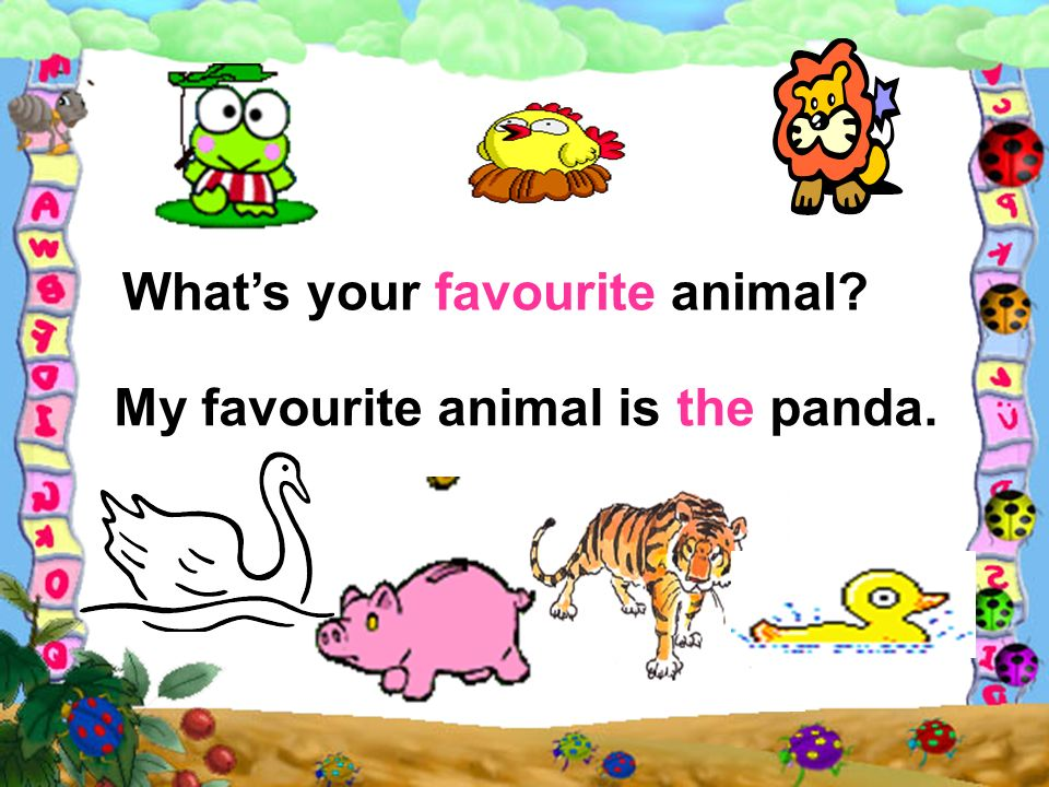 My favourite animal is the panda.