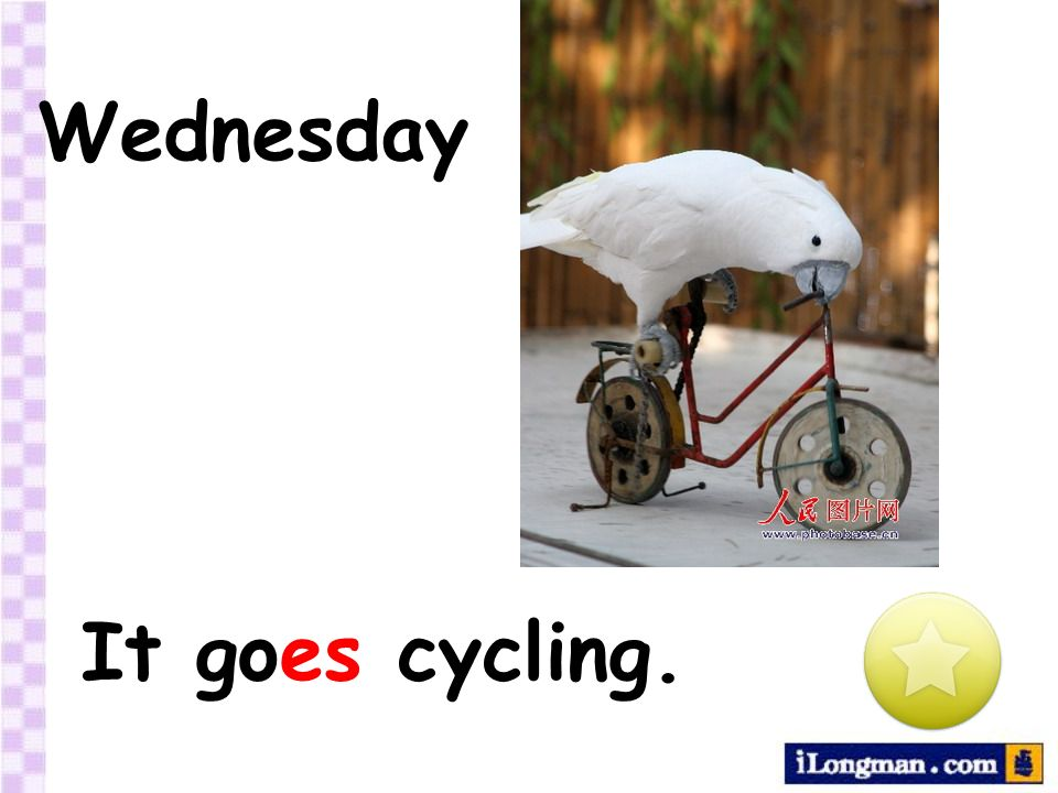 Wednesday It goes cycling.