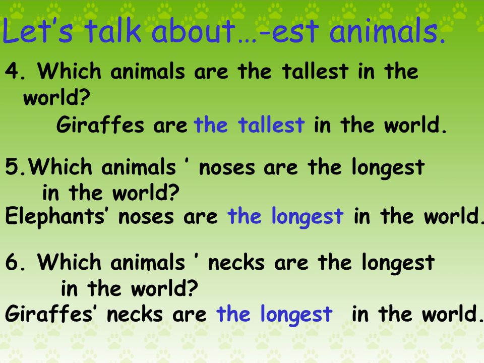 Lets talk about…-est animals. 1.Which animals are the biggest in the world.