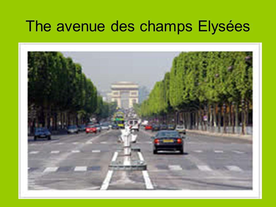 The avenue des champs Elysées