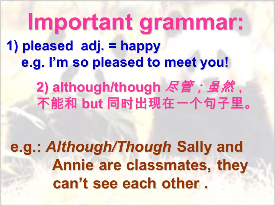 Important grammar: 1) pleased adj. = happy e.g. Im so pleased to meet you.