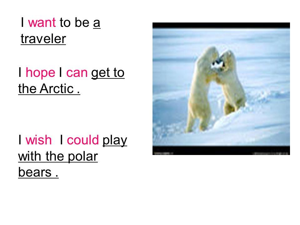 I hope I can get to the Arctic. I want to be a traveler I wish I could play with the polar bears.