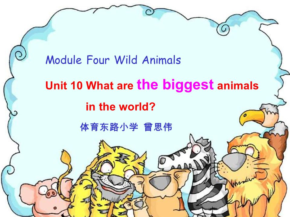 Module Four Wild Animals Unit 10 What are the biggest animals in the world