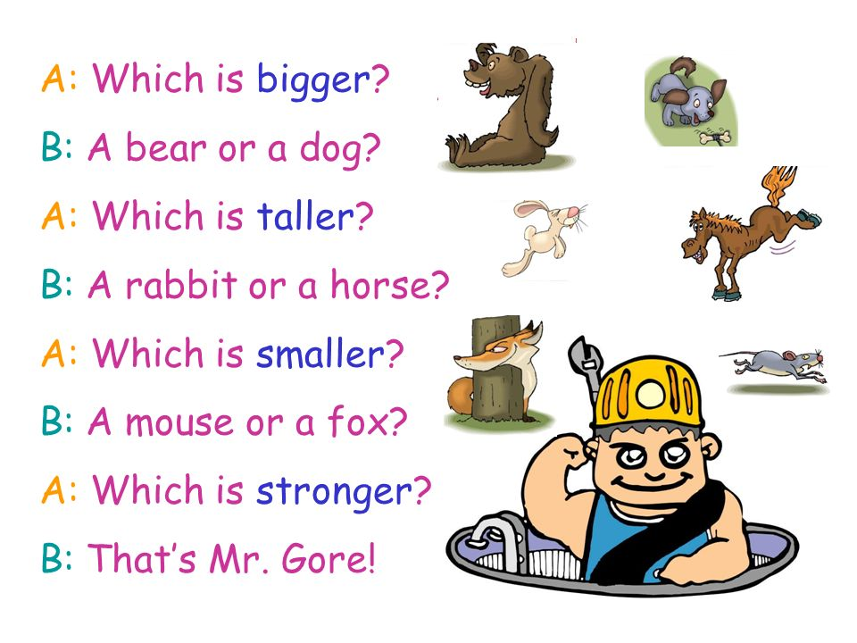 A: Which is bigger? B: A bear or a dog? A: Which is taller? B: A rabbit or a horse? A: Which is smaller? B: A mouse or a fox? A: Which is stronger? B:
