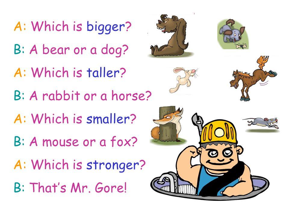 A: Which is bigger. B: A bear or a dog. A: Which is taller.