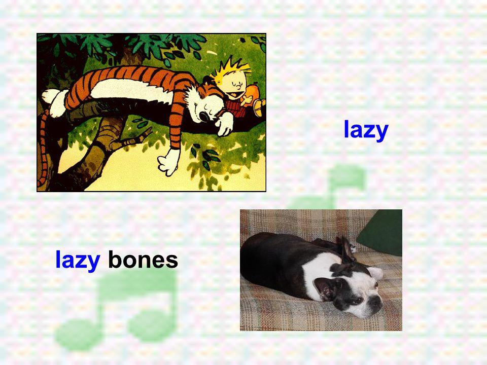 lazy lazy bones